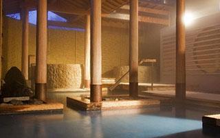 関西のアルカリ温泉宿泊施設びわこ緑水亭